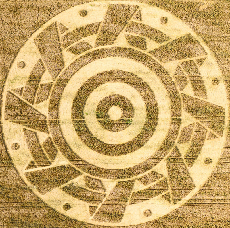 Crop Circles 2020 - Ammersee (South End), West of Munich, Bavaria. Germany.  Reported 26th July Caf499fd5918b238