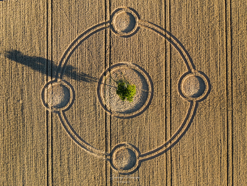 Crop Circles 2020 - Potterne Field, Nr Devizes, Wiltshire.  Reported 4th August 6ed501150ff71647